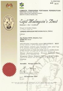 sijil1